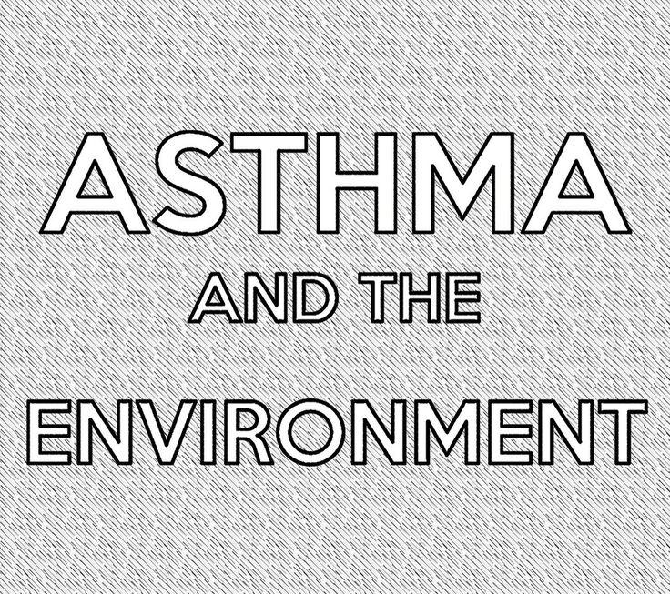 phthalates case study