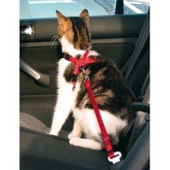 Sikkerhetsele For Katt - Kattens sikkerhet - Catstore4u