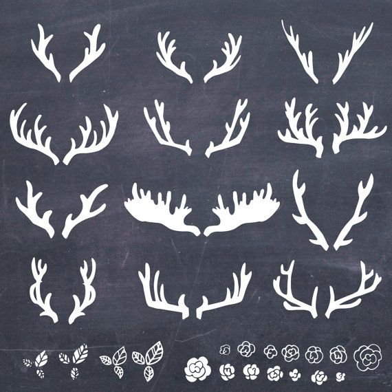12 Hand Drawn Antlers Clip Art // Photoshop par thePENandBRUSH