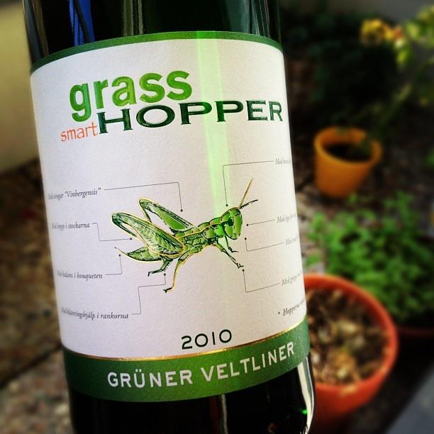 Grasshopper Gruner Veltliner, Tolna Hungary, 2010