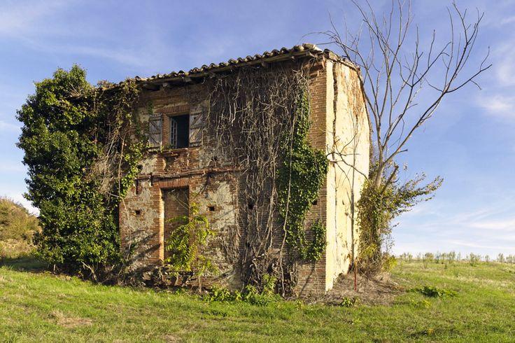 Maison abandonnée - entre Toulouse et Montauban ...mais a-t-elle été jamais habitée ou bien n'était-ce qu'une remise ?