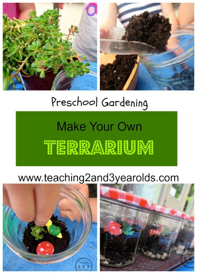 How To Make A Terrarium With Kids The Secret The Secret