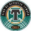 Deportes Temuco vs Universidad de Concepción Oct 30 2016  Live Stream Score Prediction