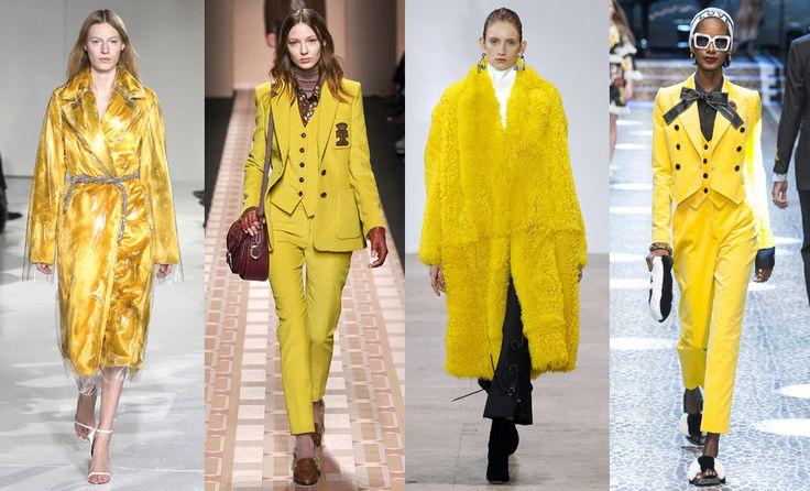 Calvin Klein, Trussardi, Ellery, Dolce & Gabbana