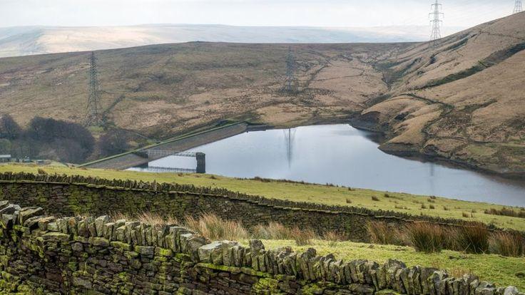 Tree planting plan to cut Calder Valley flood risk - BBC News