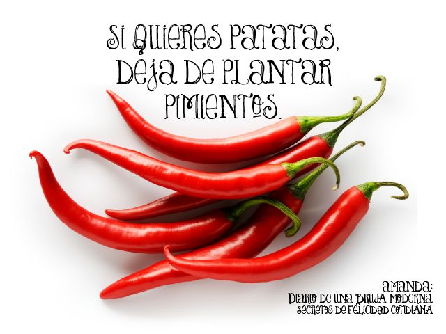 #amanderos, Si quieres patatas, deja de plantar pimientos. #secretosdefelicidadcotidiana #diariodeunabrujamoderna #cambio #felicidad