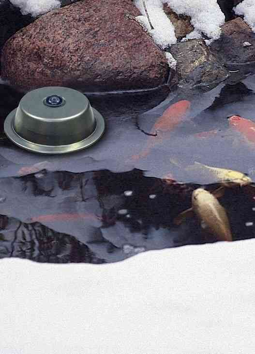25 Best Ideas About Pond Heater On Pinterest Deck