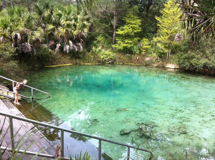 Pitt Springs, Florida North of Panama City  2016