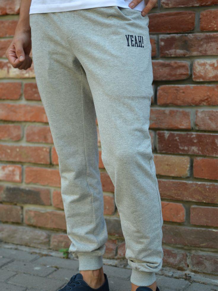Удобные мужские спортивные штаны YEAH! GRIZZLE для активного образа жизни. Универсальная расцветка позволяет удачно комбинировать брюки с футболками и свитерами разных оттенков