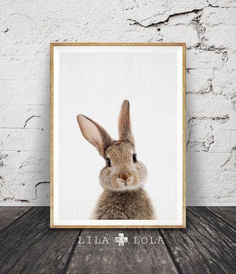 Guardería Animal, conejo pared impresión arte, bosque vivero decoración, regalos de bebé, impresión arbolados Bunny, conejo foto, descarga Digital