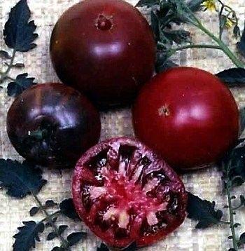 Organic Heirloom Gypsy Black Tomato Non-GMO Garden Vegetable Seed