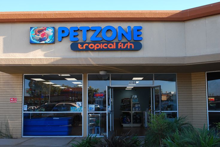 We are finally having the official grand opening of Pet Zone Tropical Fish in Kearny Mesa! It has been great being apart of this new neighborhood and many of you have made us feel very welcomed since we've opened our doors for business in July.   Be ready for some awesome deals we'll be having during the Grand Opening weekend (Oct. 21st - 23rd, 2016). These specials are only available this weekend so don't miss your chance to score on some great deals on freshwater fish & aquarium supplies!