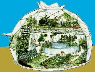 geodesic dome greenhouse with aquaponics... I'd feel in paradise with somethng like this... wow!