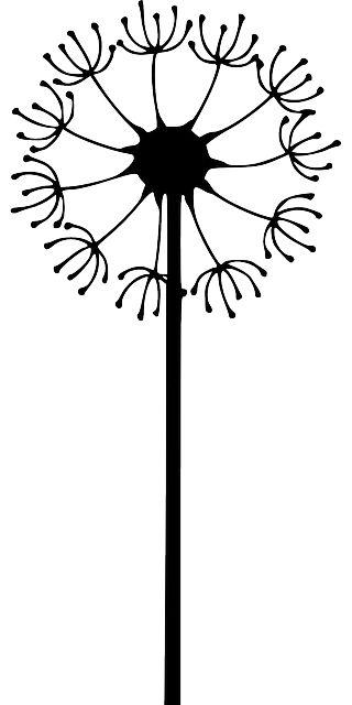 Silhouette, Blume, Gras, Frei, Pflanze, Löwenzahn