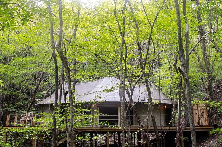 All-Inclusive Luxury Tents in Costa Rica