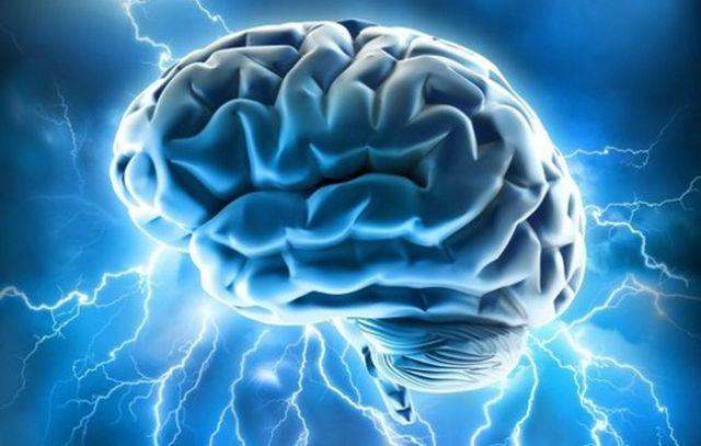 TREI delicatese pentru buna functionare a creierului tau