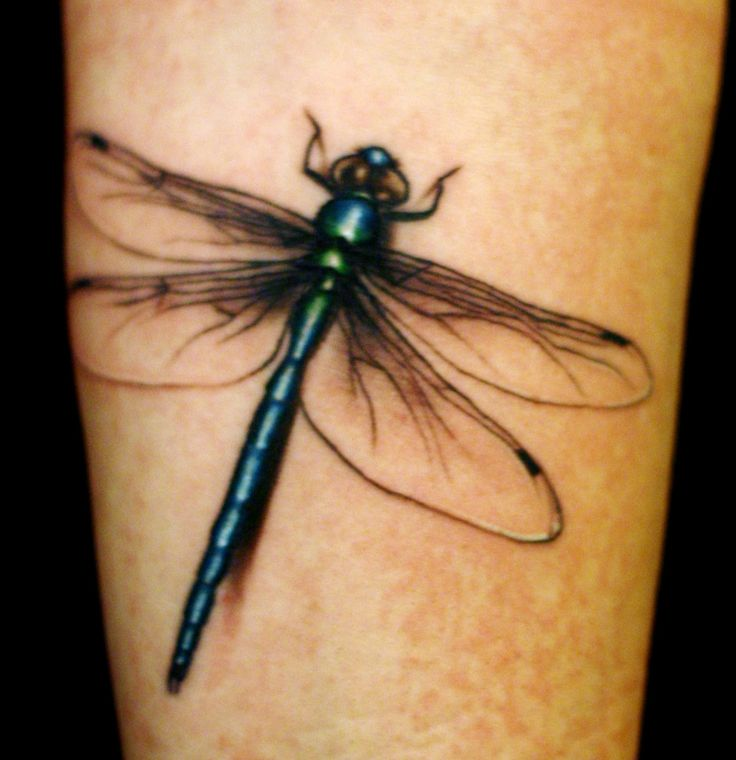 39 best Dragonfly With Flower Tattoo Art images on ...