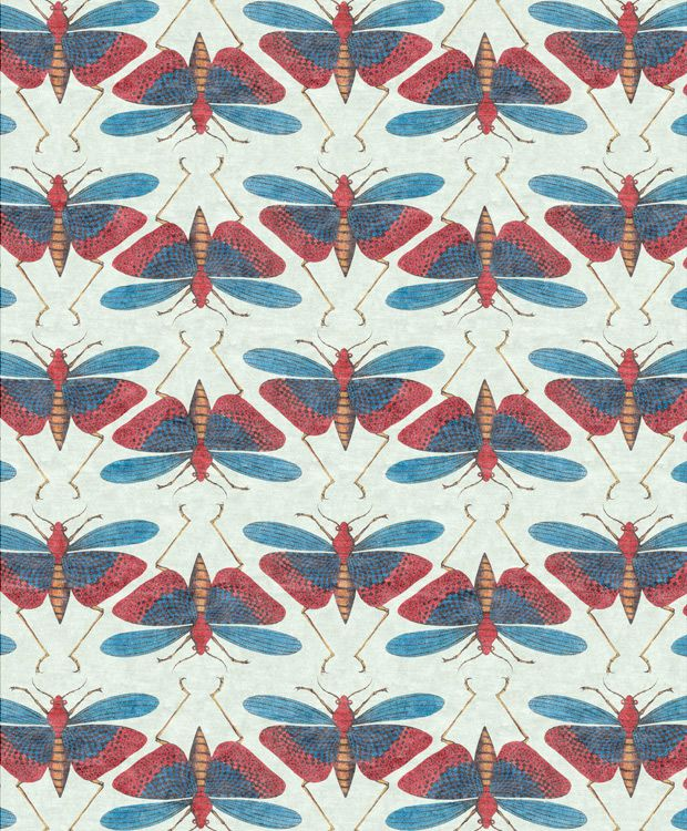Insects By Kamy (via referans on notcot http://www.notcot.org/post/51260/)