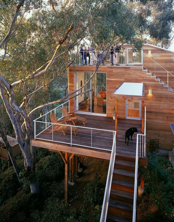 A San Diego Home in the Trees by Safdie Rabines Architects | The house is even beautiful on the inside!