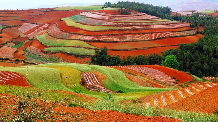 Voyage Yunnan et Nord Vietnam Charmante ville de la minorité locale Bai - Yunnan Vieille ville de Dali - Yunnan Marchés coloré à Dali - Yunnan Beauté sauvage et pittoresque de Sapa - Vietnam Yunnan et Nord Vietnam