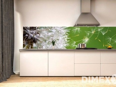Fototapeta do kuchyne - púpava KI-180-012 | DIMEX