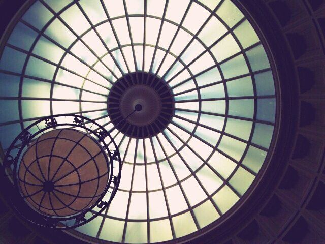 chromaticmisadventures:      Dome at the library in the New York Botanical Garden