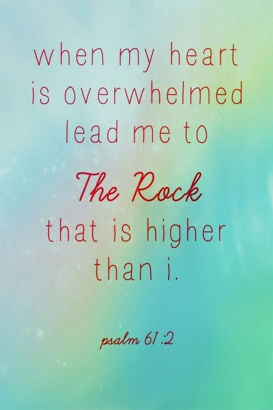 You are my Rock, my Salvation.  I turn to you when my heart is weary.