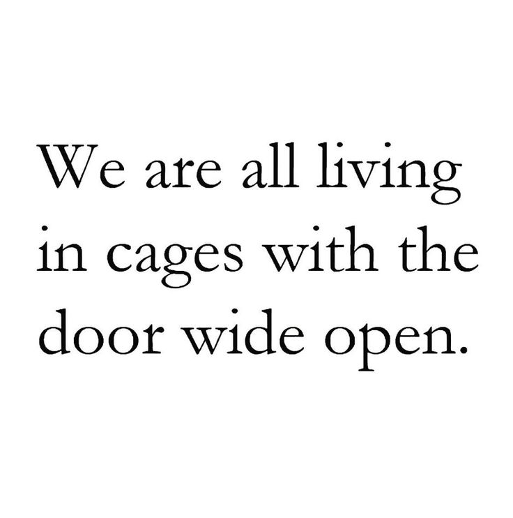 What are you waiting for? Reclaim your freedom. What feels heavy in your life today? What environments, relationships, jobs, and things feel like cages?   Remember your expansive heart and spirit. Nothing can compress or suffocate your light unless you allow it. Walk through the door continuously until the walls dissolve ✨ #freedom #courage # consciousliving # spiritualawakening #awakening #speakyourtruth