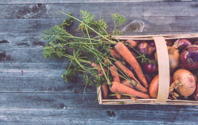 """Markus Bogner bewirtschaftet einen winzigen Hof – vielfältig, ökologisch und vor allem: erfolgreich. Der """"Bauer aus Leidenschaft"""" zeigt nicht nur, dass Selbstversorgung möglich ist, sondern auch, dass die Zukunft der Ernährung in der kleinbäuerlichen Landwirtschaft liegt. http://www.food-and-farm.com/"""
