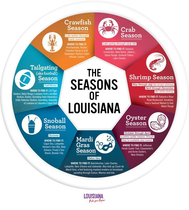 The Seasons of Louisiana - we celebrate more than four seasons in the Bayou State and each one delivers tasty treats! Which is your favorite season? #onlylouisiana