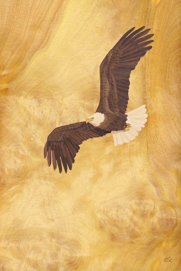 104 best eagles images on pinterest eagles bald eagles for Wood veneer craft projects