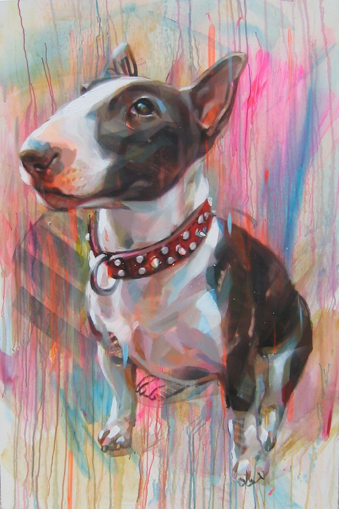 bull terrier artist 546 best images about bull terrier on pinterest bull 9488
