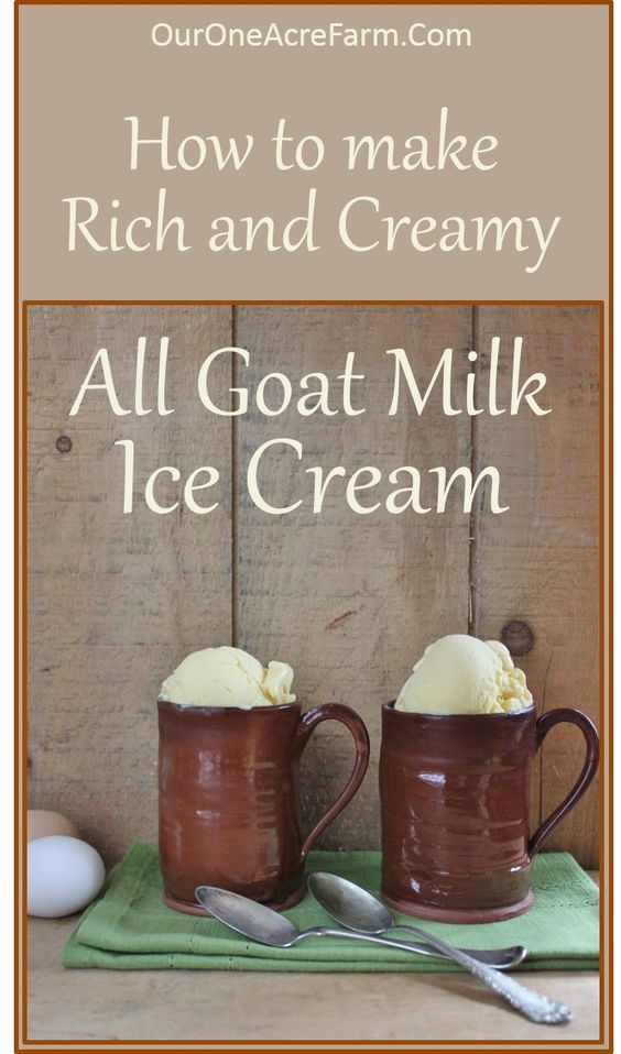 You CAN make rich and creamy goat milk ice cream, without any cow milk products! Read about the interesting tricks used here, and use these recipes to make BOTH vanilla and chocolate goat milk ice cream!: