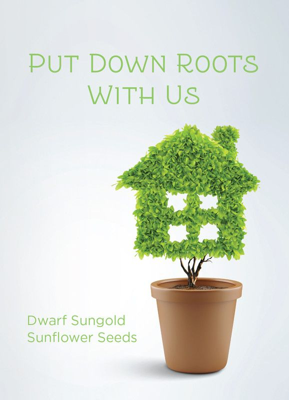 """""""Put Down Your Roots"""" Seed Packet"""