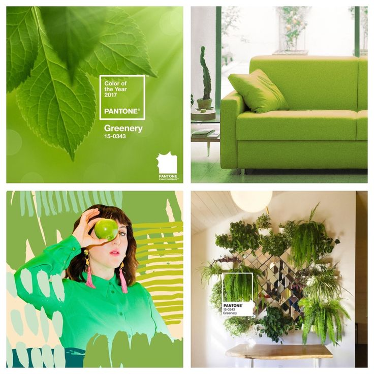 Color of the year 2017 by Pantone _ Greenery