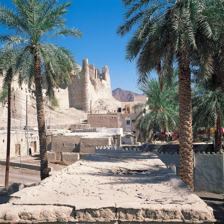 Oman, عمان , voyage, Middle East, Muscat, As Sib, Salalah, Bawshar, Al Sohar, As Suwayq, Ibri, Travel & Adventures, photo