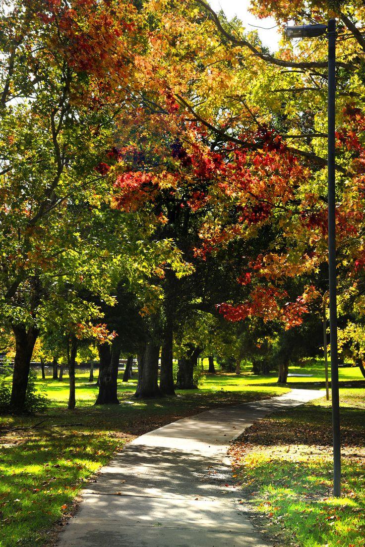 Stirk Park, Kalamunda WA