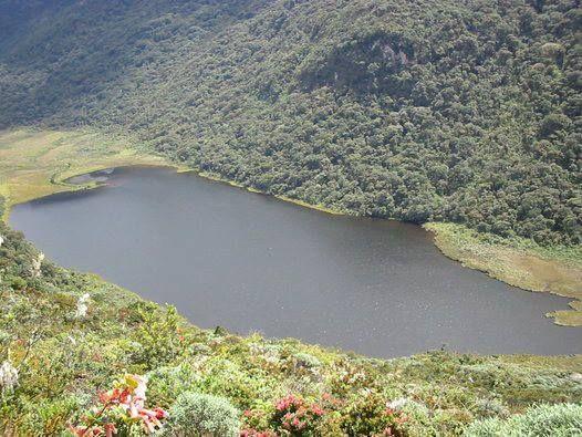 ¿Sabías que A 3.350 metros sobre el nivel del mar y a tan solo 65km de San Agustín nace el río Magdalena? El #paisaje de la Laguna del Magdalena es propio de una zona de páramo, en medio de la espesa bruma y rodeada de frailejones, musgo y enconillos.    #CambiaTuNorte, #VenAlHuila.  http://huila.travel/