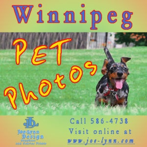 Pets in the Park photo shoots available For Pets! - Winnipeg Photography & Video Services - Kijiji Winnipeg Canada.