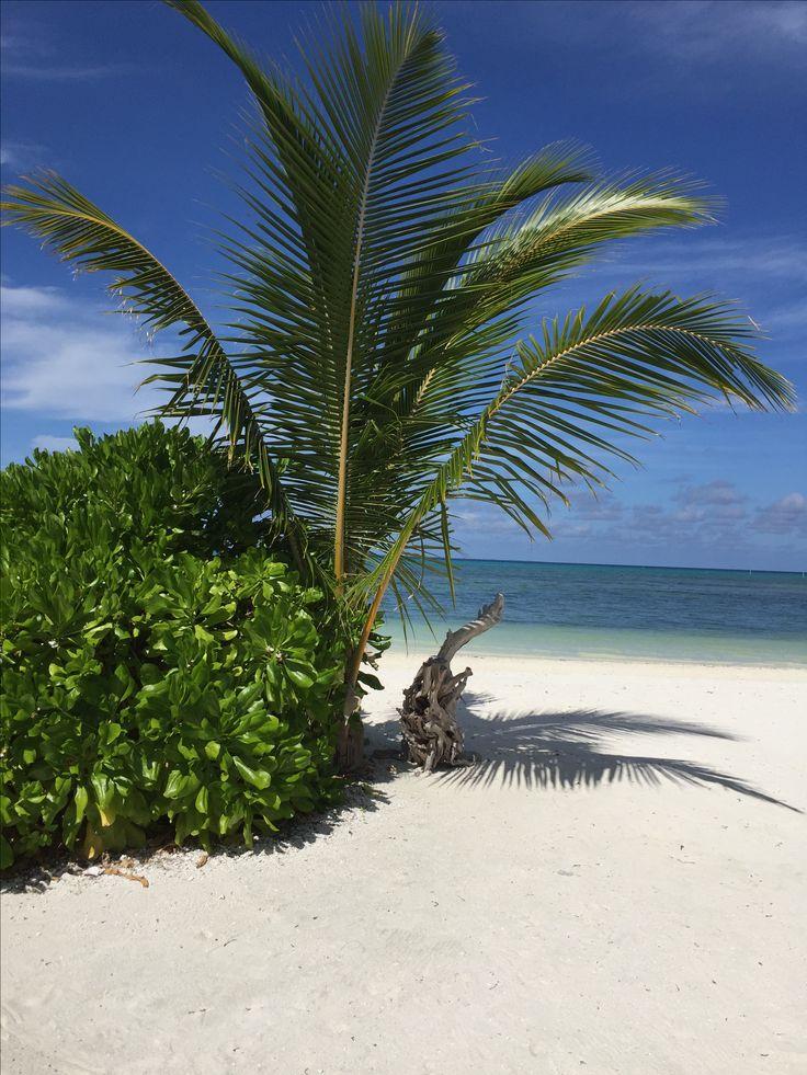 Seenu Atholhu Malediivit