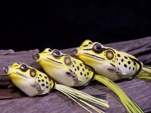 Koppers Live target frogs yellowblack all 3 sizes view 2