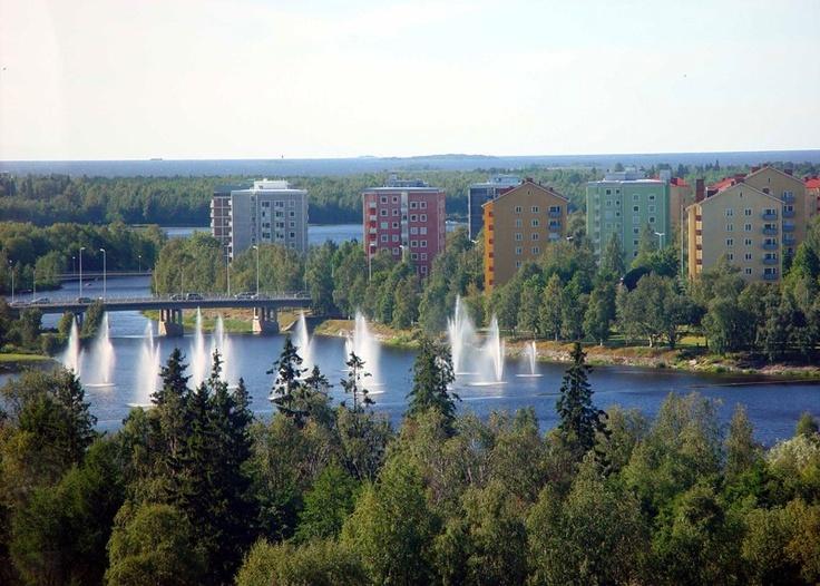 Toivoniemi , Oulu