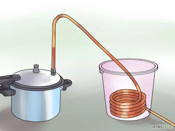 Image intitulée Make Essential Oils Step 6