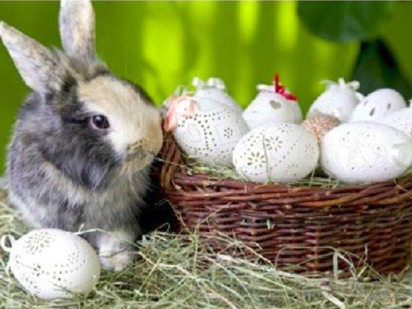 Eier gravieren und so wunderschöne Osterdeko basteln. Unsere bebilderte Bastelanleitung zeigt, wie man Lochmuster in Eier graviert.