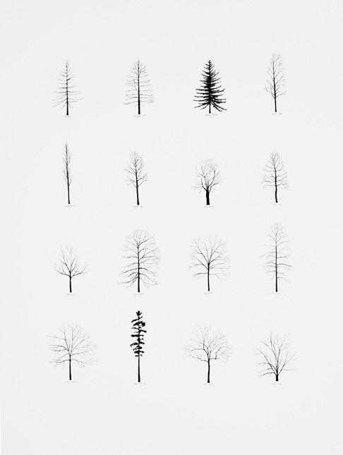 little trees tattoos