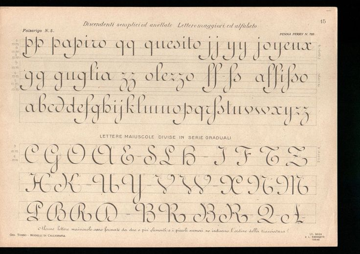 """The plates on ronde from Prof. Giovanni Tonso's """"Modelli Di Calligrafia"""", which was originally published in 1898:"""