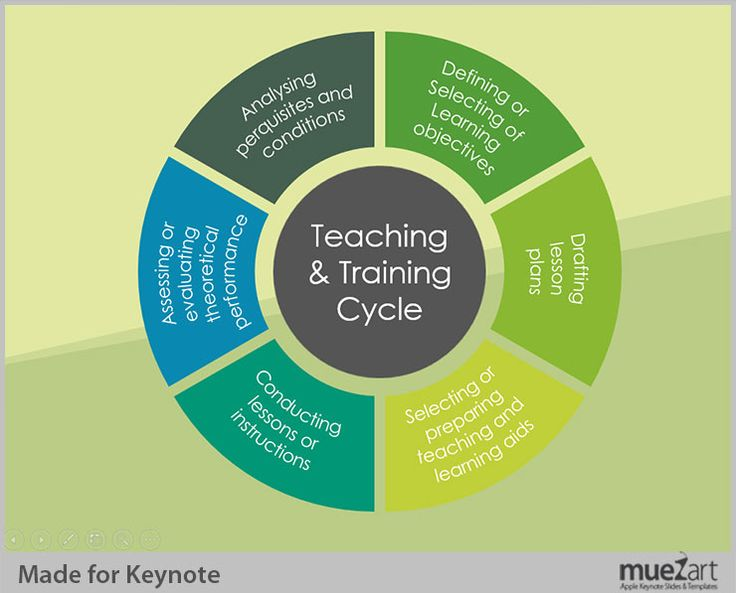 teacher training cycle Learn how to become a teacher in victoria, find training opportunities and build your professional skills upcoming pd opportunities enhance your expertise as a history teacher making the most of formative assessment using insight  the review cycle, building your professional skills development institutes.