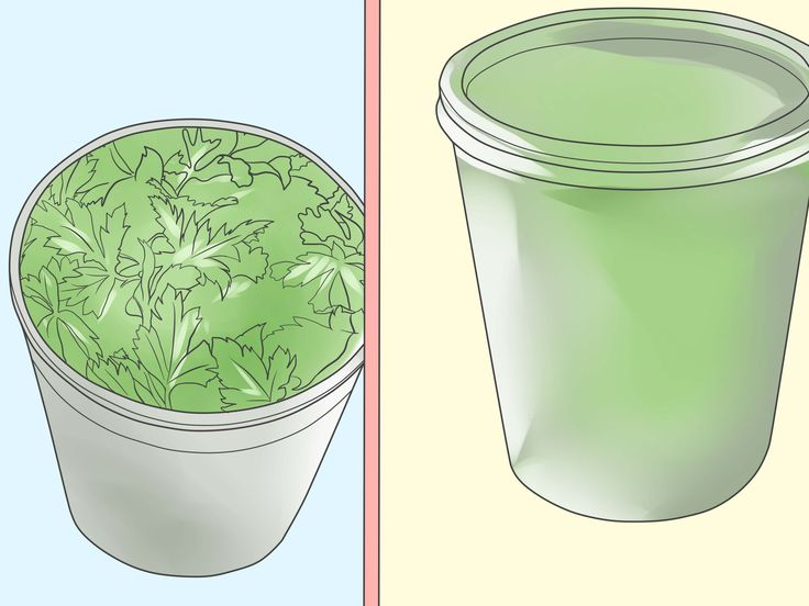 How+to+Grow+Parsley+--+via+wikiHow.com
