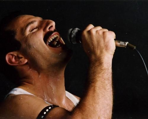 Widely considered as one of the greatest vocalists in popular music, Freddie Mercury possessed a very distinctive voice. Although his speaking voice naturally fell in the baritone range, his singing voice was that of a tenor. His recorded vocal range spanned nearly four octaves (falsetto included), with his lowest recorded note being the F below the bass clef and his highest recorded note being the D that lies nearly four octaves above.