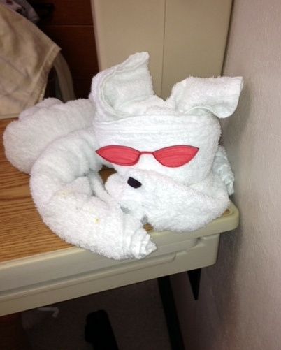 Our valued Sodexo employees at several hospitals employ the skill of towel art to brighten a patient's day. These pictures come courtesy of our team at Memorial Health System of East Texas.